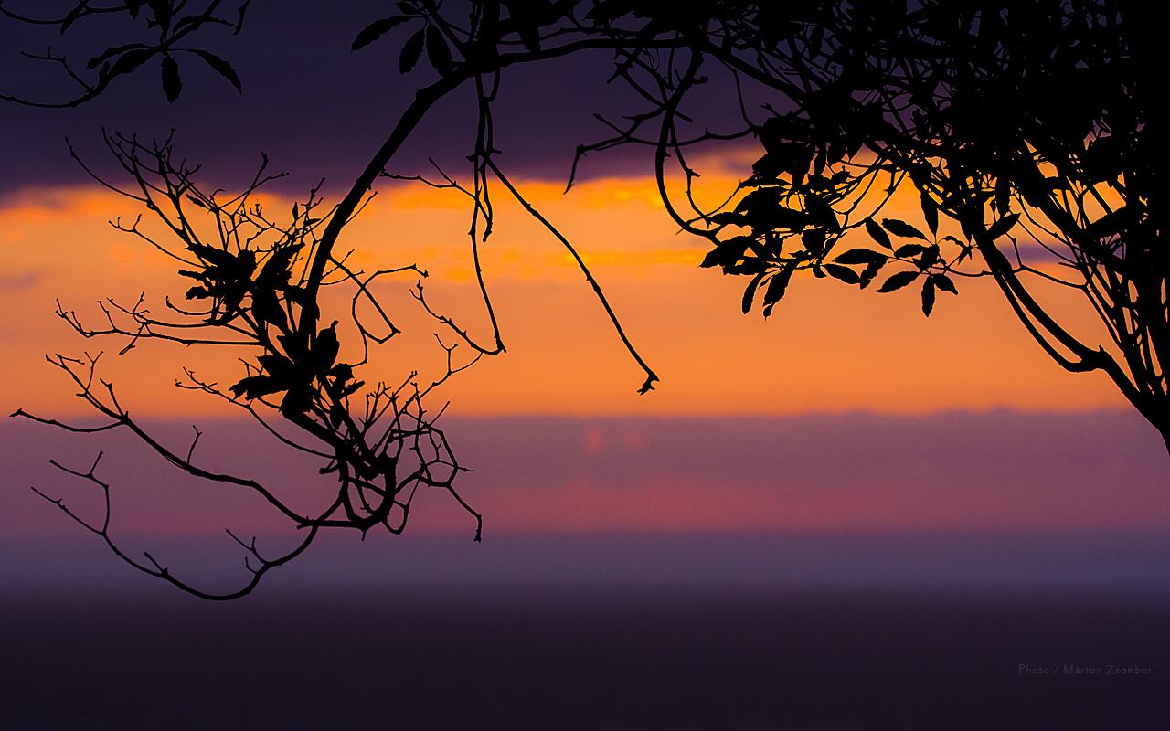 sunset-1280x800.jpg